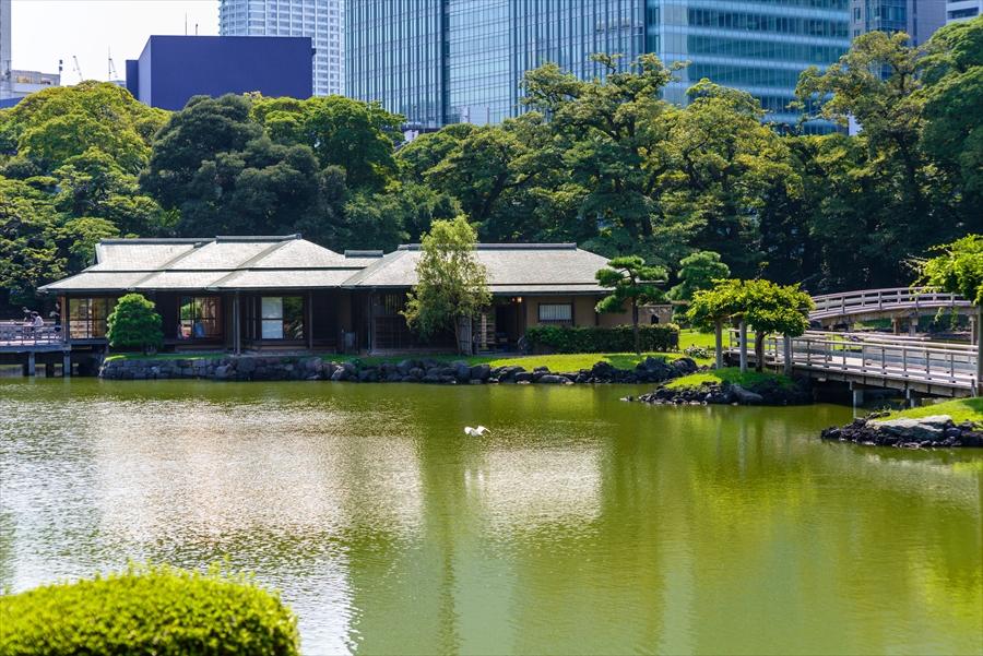 東京都 浜離宮恩賜庭園 広大な庭園