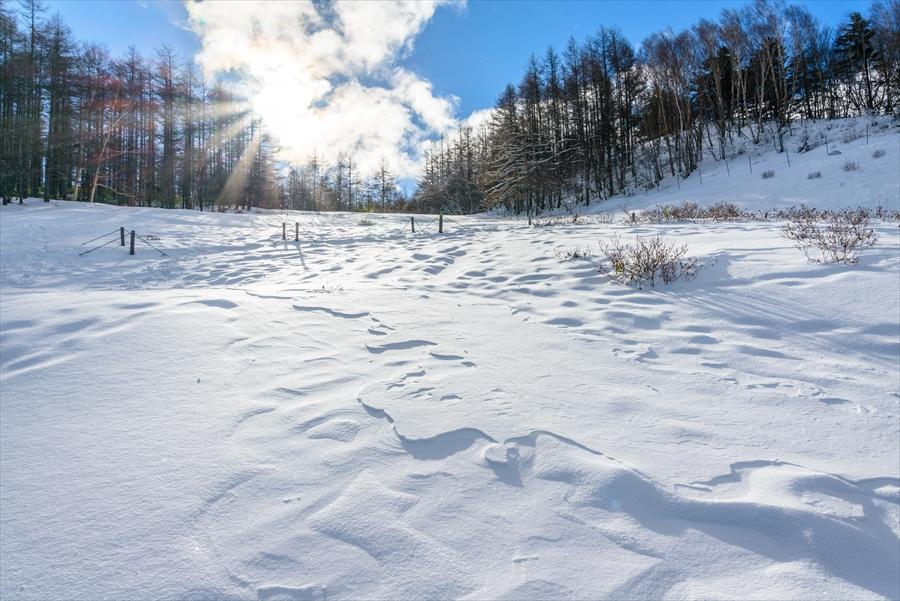 長野県 入笠山 初めての雪山